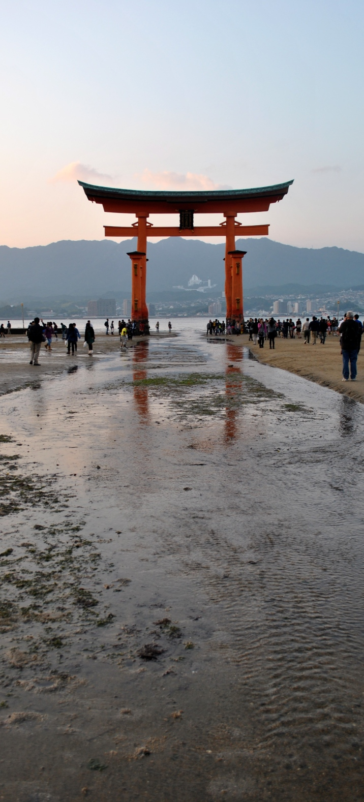The Famous Sea Tori- Miyajima, Japan